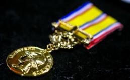 medaille sapeur-pompier honneur grand or 40 ans reduction
